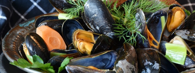 c_800_300_16777215_00_images_mussels-3148452_960_720.jpg